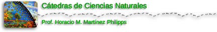 Ciencias Naturales I.S.F.D. N° 34